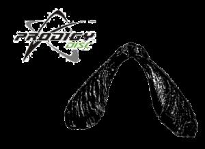 prodigy logo and airborn logo