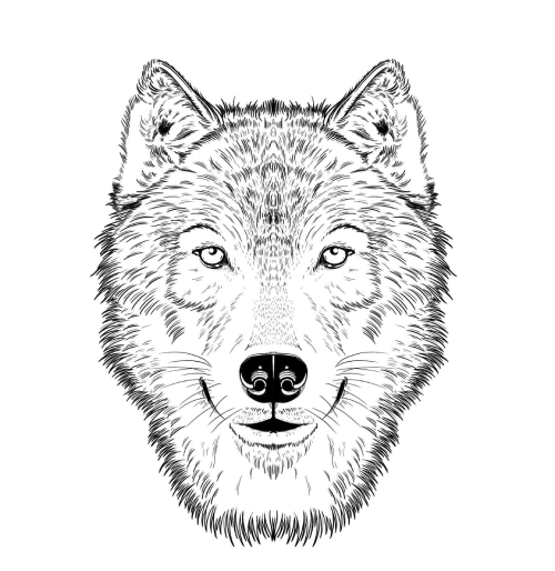 timberwolf logo from the preserve